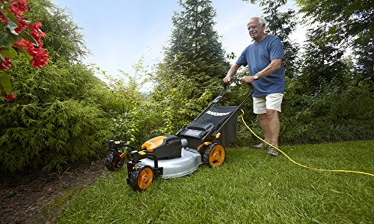 Worx Wg782 14 Inch 24 Volt Cordless Lawn Mower With